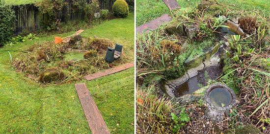 Pond Removal 3&4
